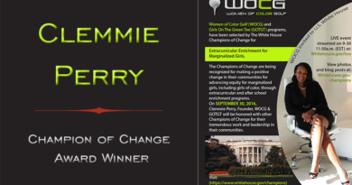 PROFILES IN REINVENTION: Clemmie Perry White House 'Champion of Change'